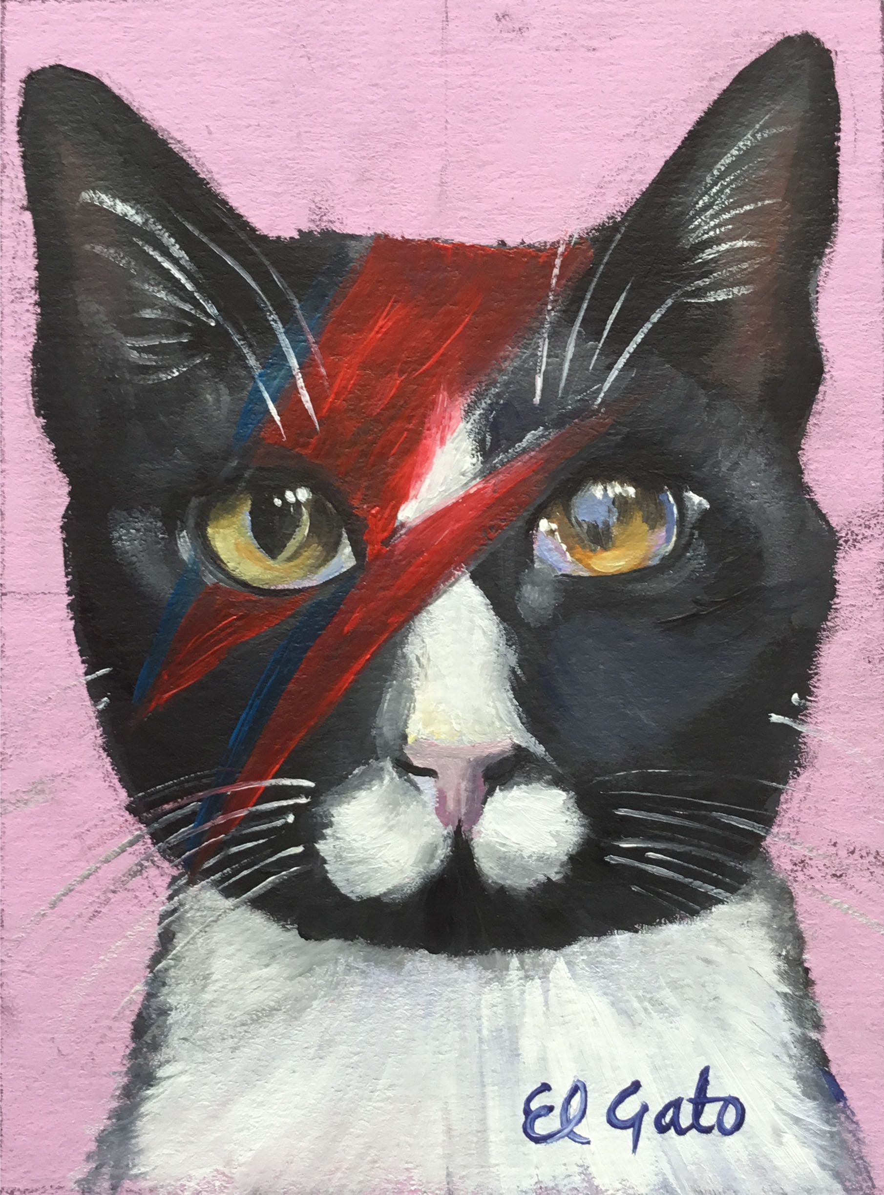 Ziggy The Feline Aladdin Sane Cat Art Painting Cat Art Cats Artists