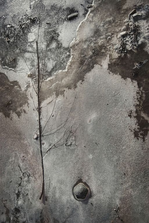 On Thin Ice  by Gustavo Orensztajn