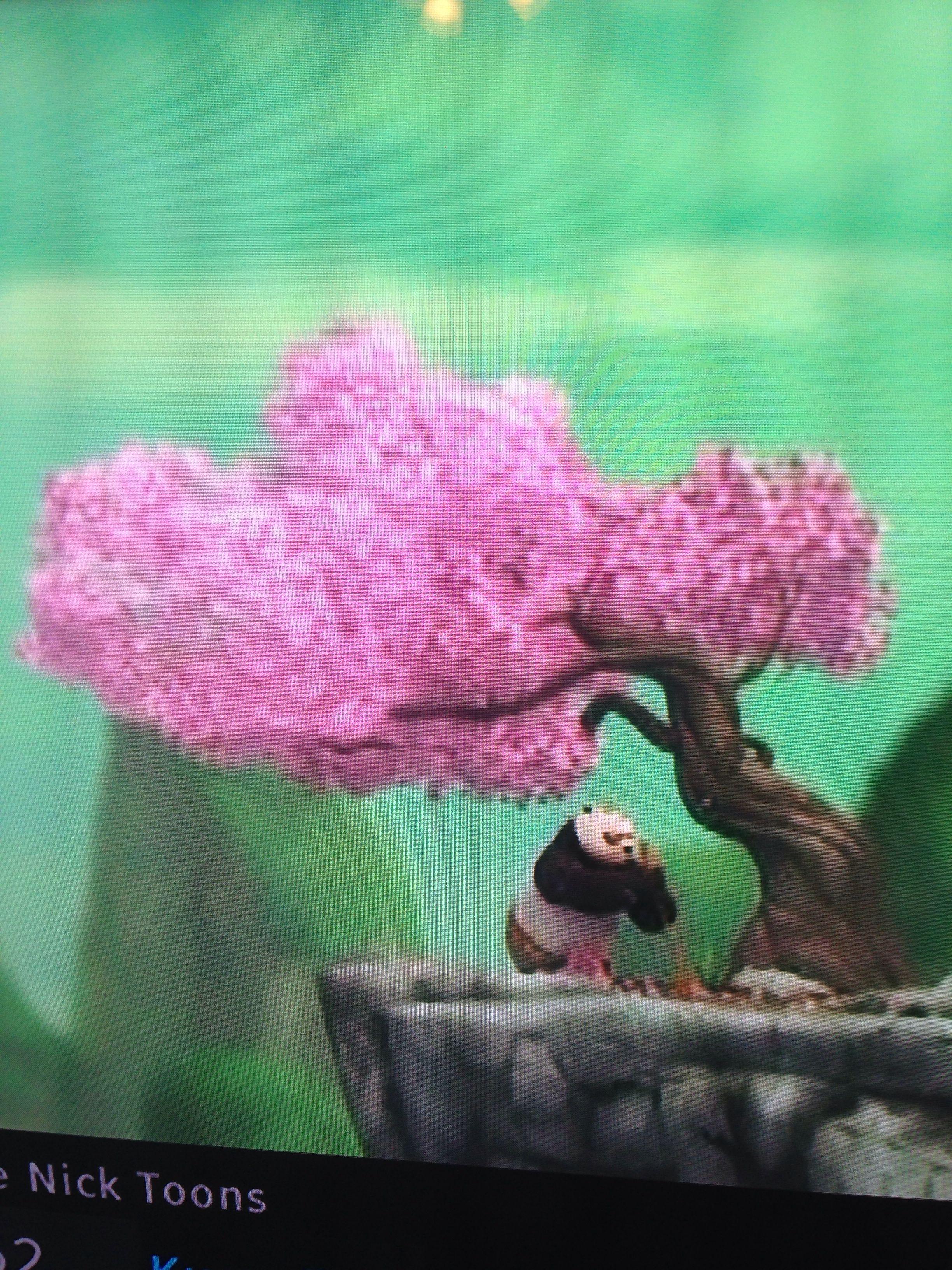 Cherry Blossom Tree From Kung Fu Panda Tattoo Inspiration Cerezo