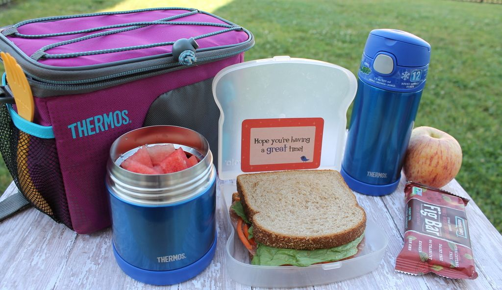 Best thermos for hot food lunch for kids best camping food for best thermos for hot food lunch for kids forumfinder Choice Image