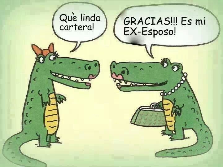 humor cartera de cocodrilo (con imágenes) | Humor grafico, El ...