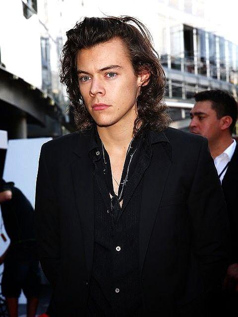Pin By Terri Wiseman On Harry In 2020 Harry Styles Pictures Harry Styles Long Hair Harry Styles