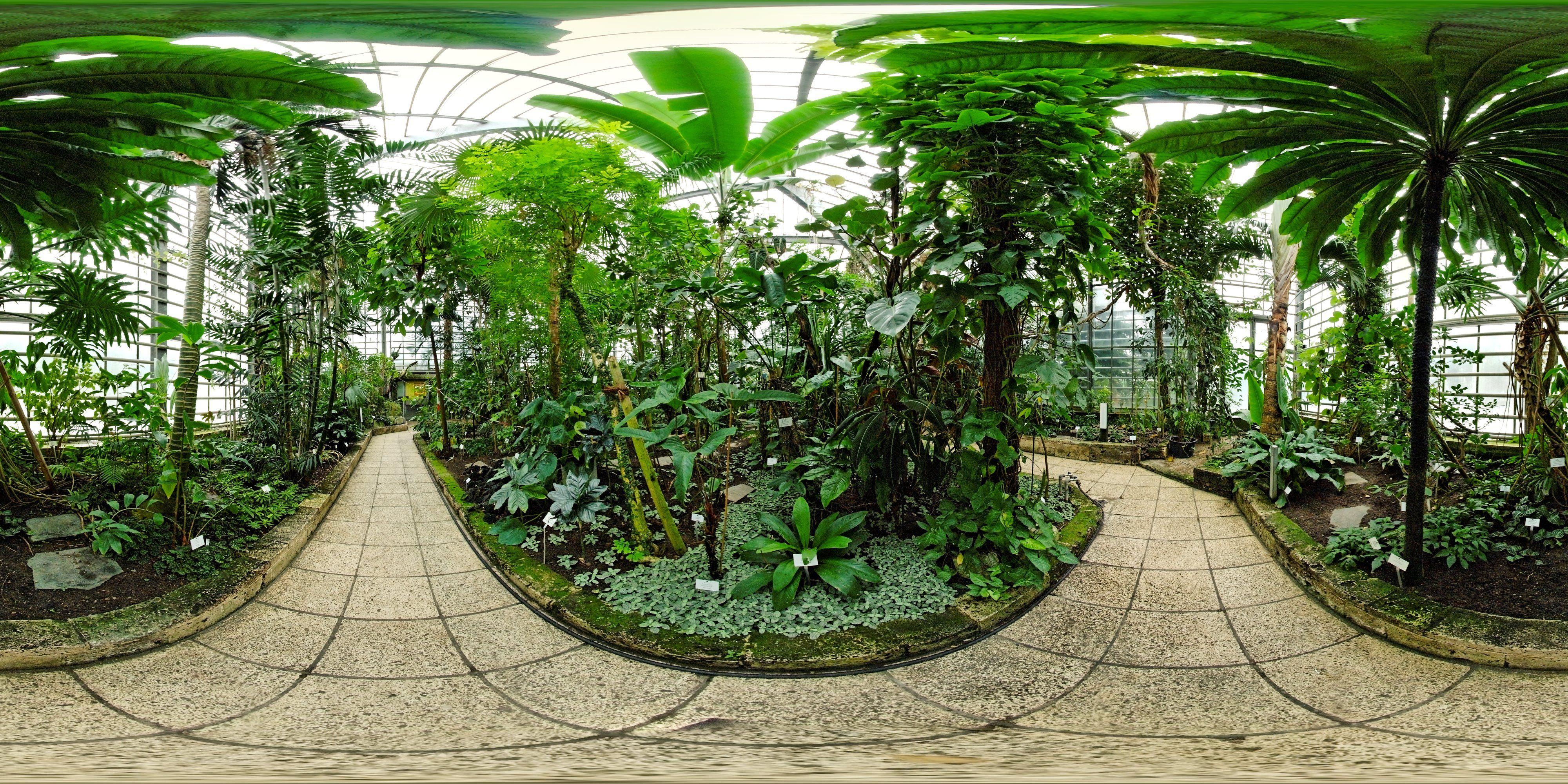Freiburg Germany Botanischer Garten Plants Favorite Places Sidewalk
