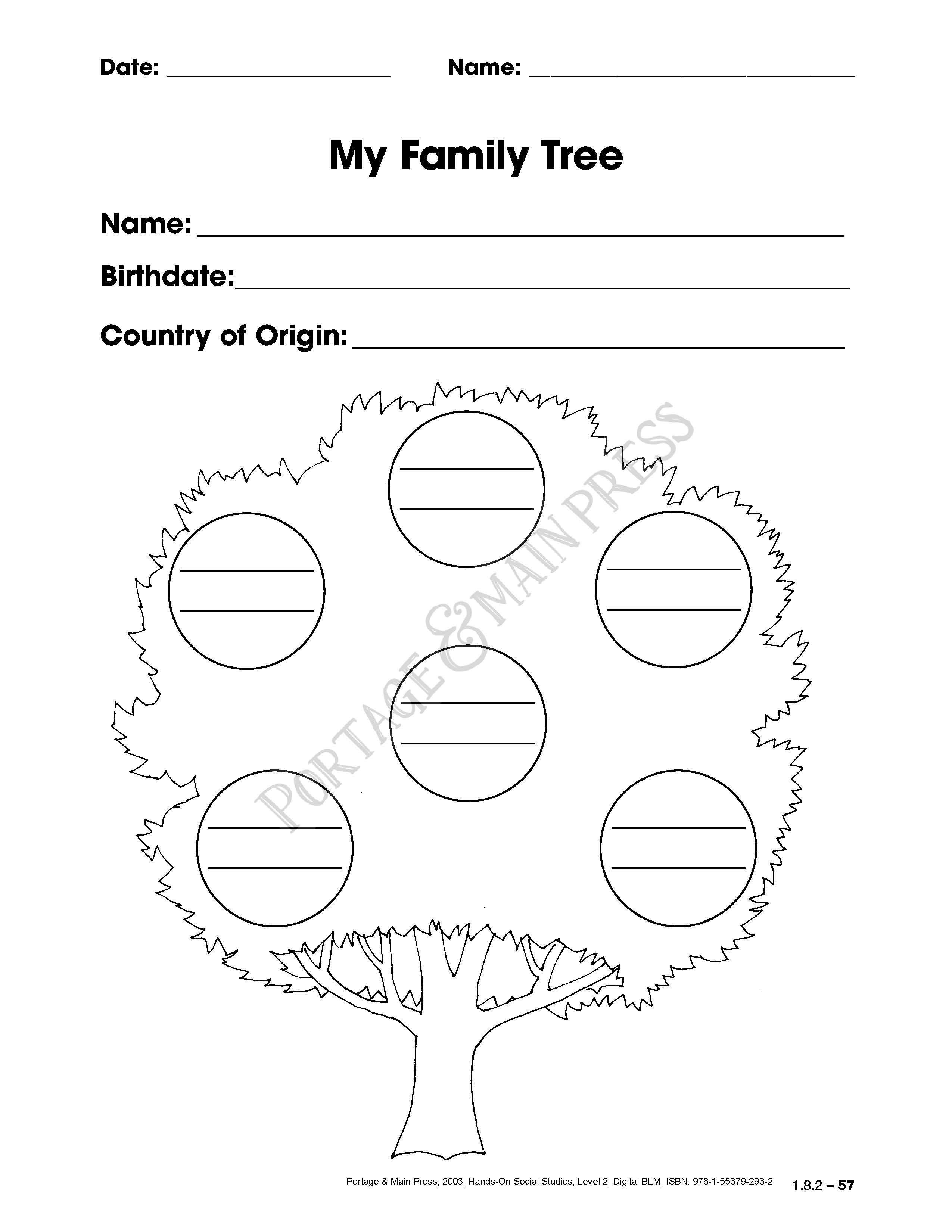Grade 2 Social Studies Family Tree activity sheet