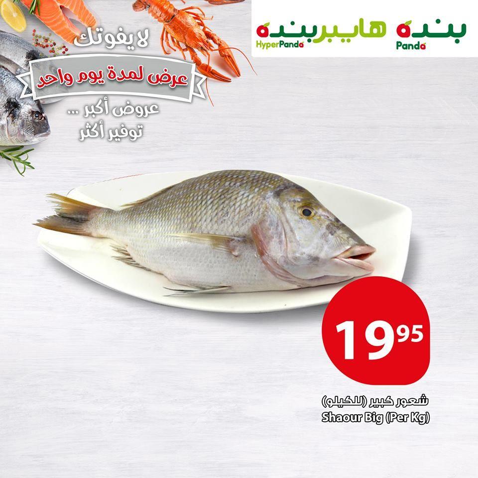عروض بنده Food Fish