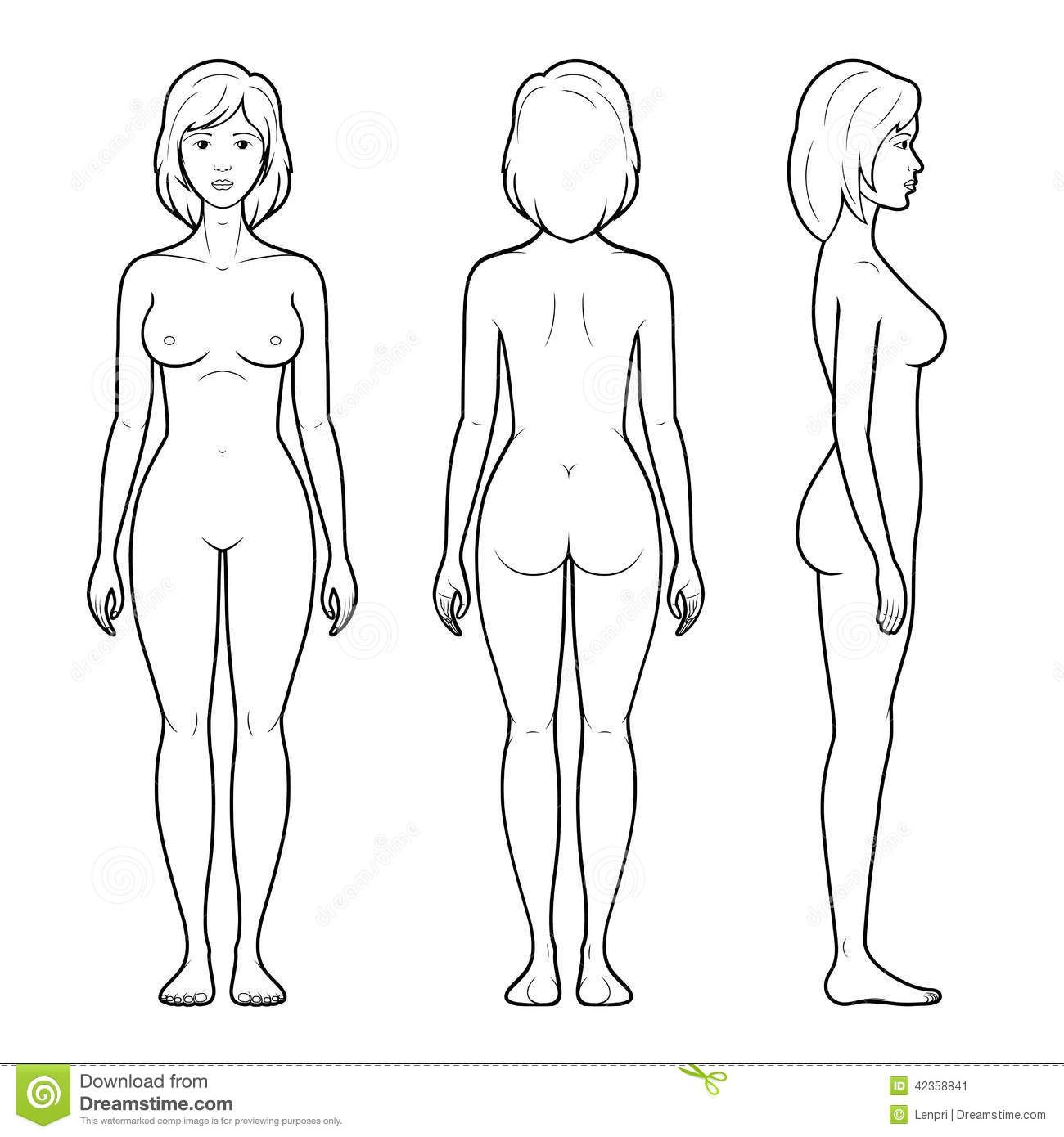 images for female human body outline front and back things to
