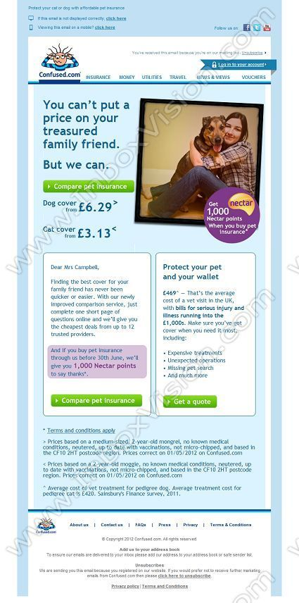 pet insurance email template  pet insurance | Email Inspiration | Pinterest | Email design and ...