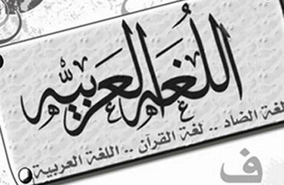 مهارة التعقيب والتعليق على رأي درس في مادة اللغة العربية مكون التعبير والإنشاء خطاب الحجاج التدريب على التعقيب وا Arabic Calligraphy Blog Posts Novelty Sign