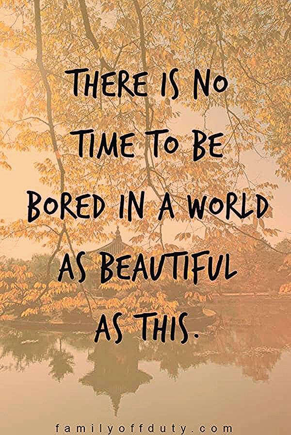 Photo of Family Travel Quotes – 31 Inspiring Family Vacation Quotes To Read In 2020