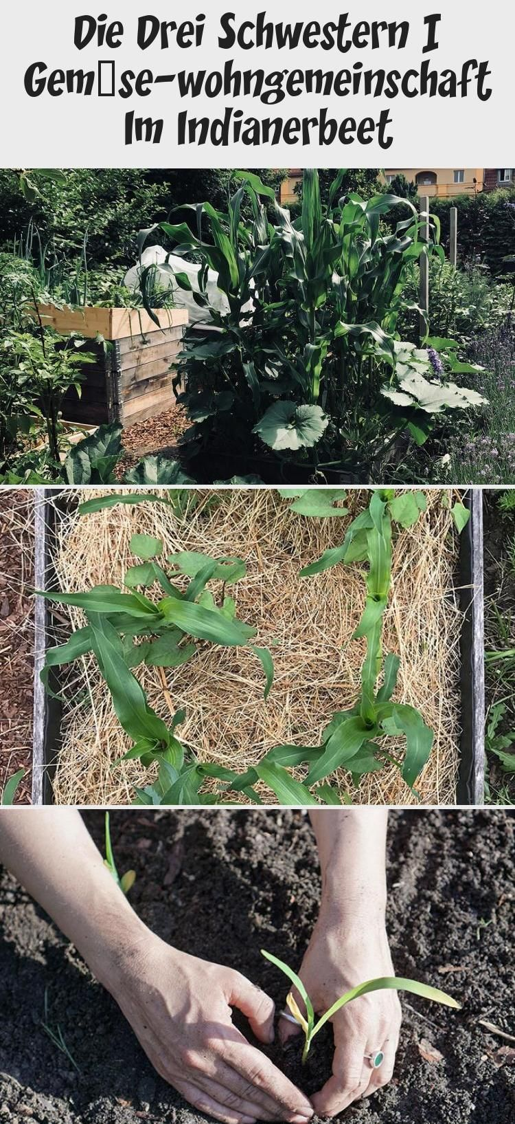 Pin On Garten Planung