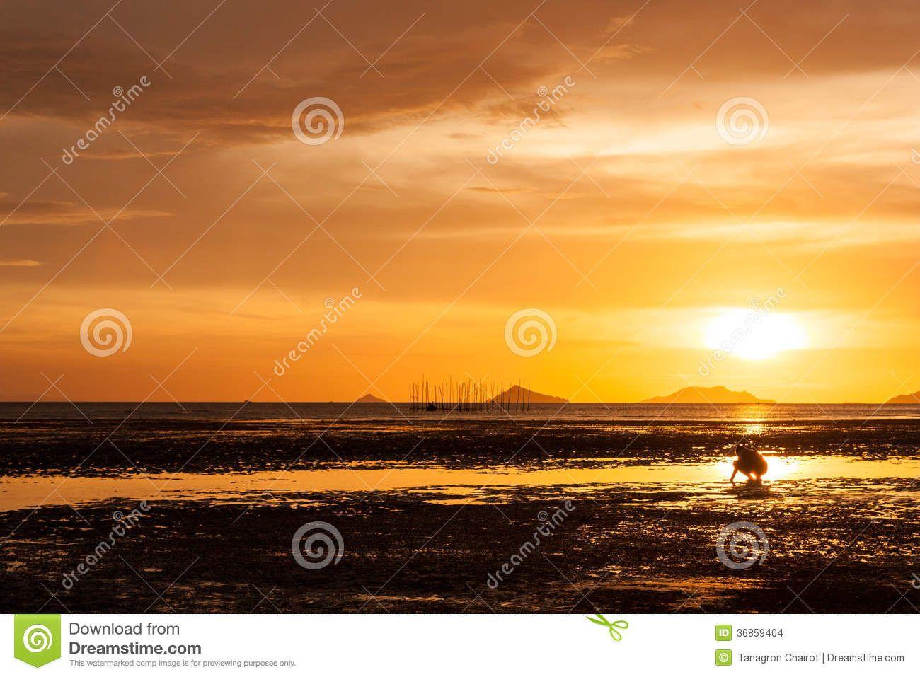 Sunset Sunsets Nature Background Wallpapers on Desktop Nexus