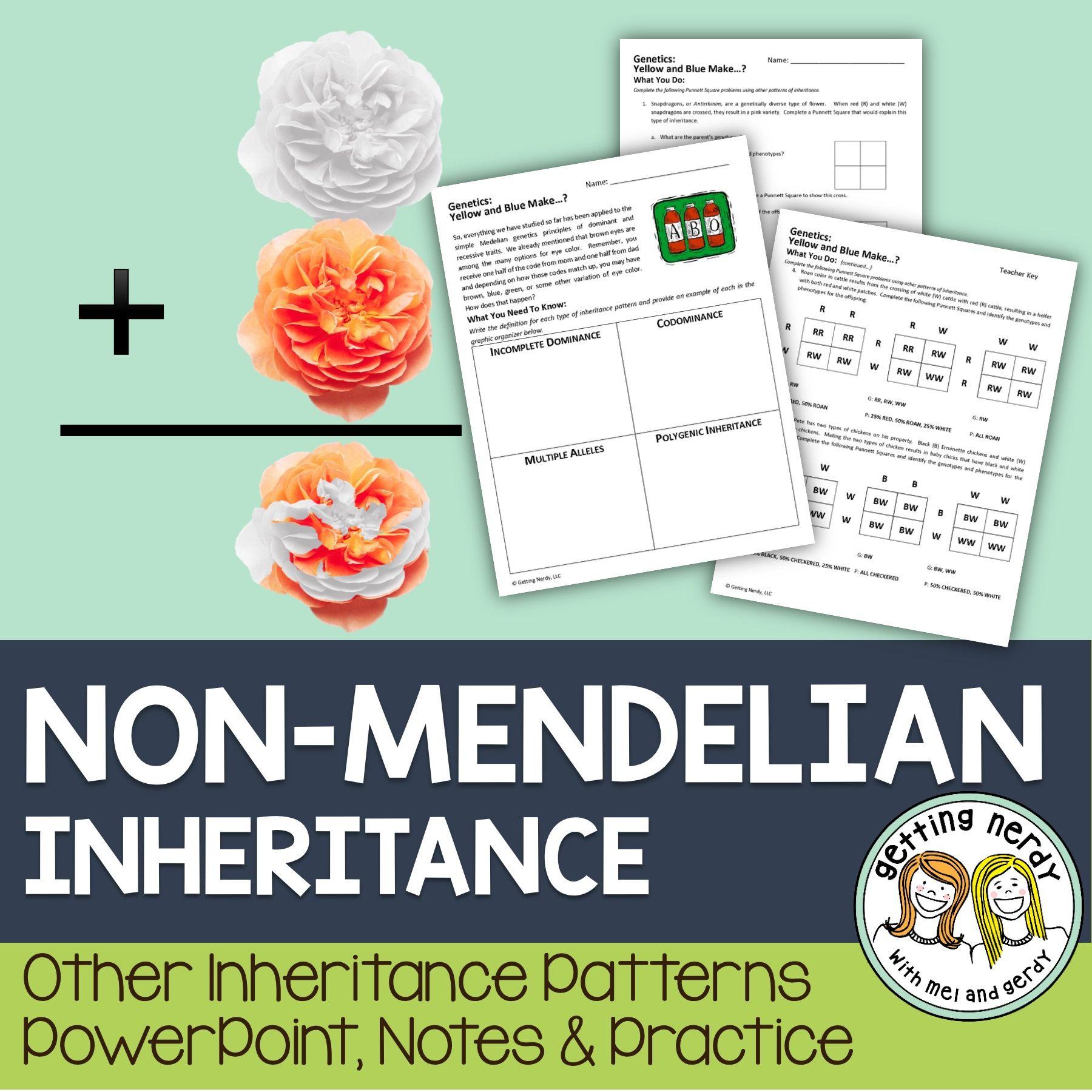 worksheet Non Mendelian Genetics Worksheet non mendelian inheritance students learning and teaching biology inheritance