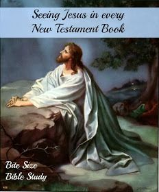 Jesus, New Testament