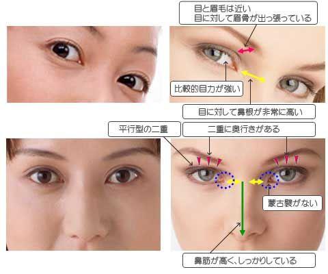 東洋人顔と西洋人顔の比較 | 05_...
