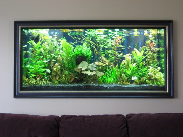 Aquarium In Small Living Room 2 Wall Aquarium In Small