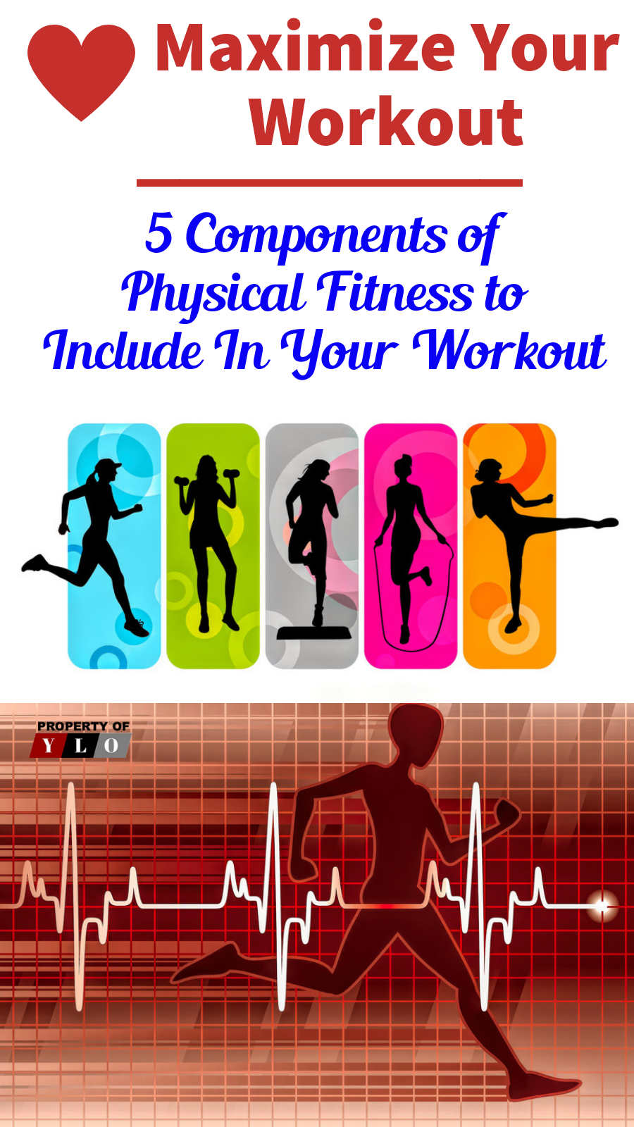 Concentrate On The 5 Components Of Physical Fitness For A Total Body Workout Plan