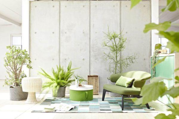 Moderne Wohnzimmer-Farben - Trendge Einrichtungsideen in Grün und