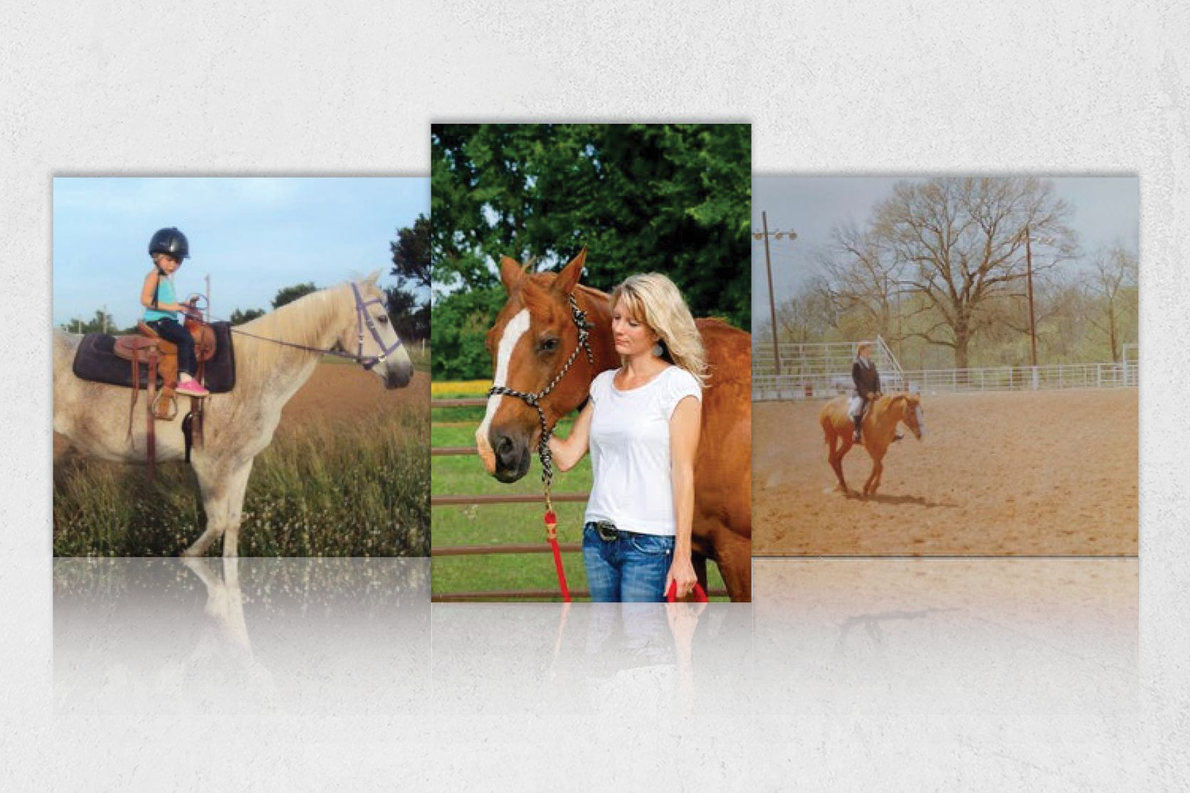 Your Horse Farm Your Horse Farm Resources For Every Horse Farm Equestrian Lifestyle Blog Rammfence Horses Yourhorsefarm Horses Horse Farms Equestrian