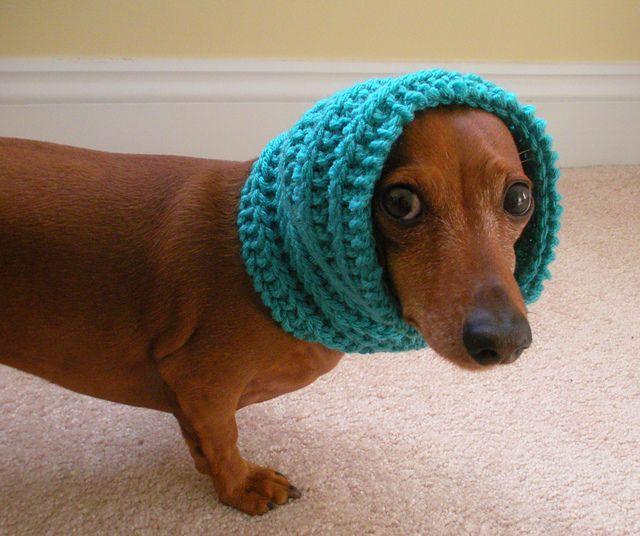Dog Cowl   Dog neck warmer, Dachshund pattern, Crochet dog