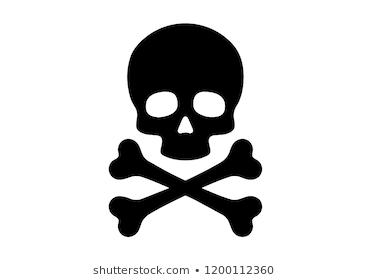 Skull Crossbones Vector Skull Stencil Skull Skull And Crossbones