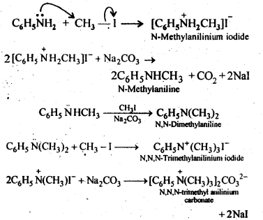 Ncert Solutions For Class 12 Chemistry Amines 5 Chemistry Lessons Chemistry Organic Chemistry Books