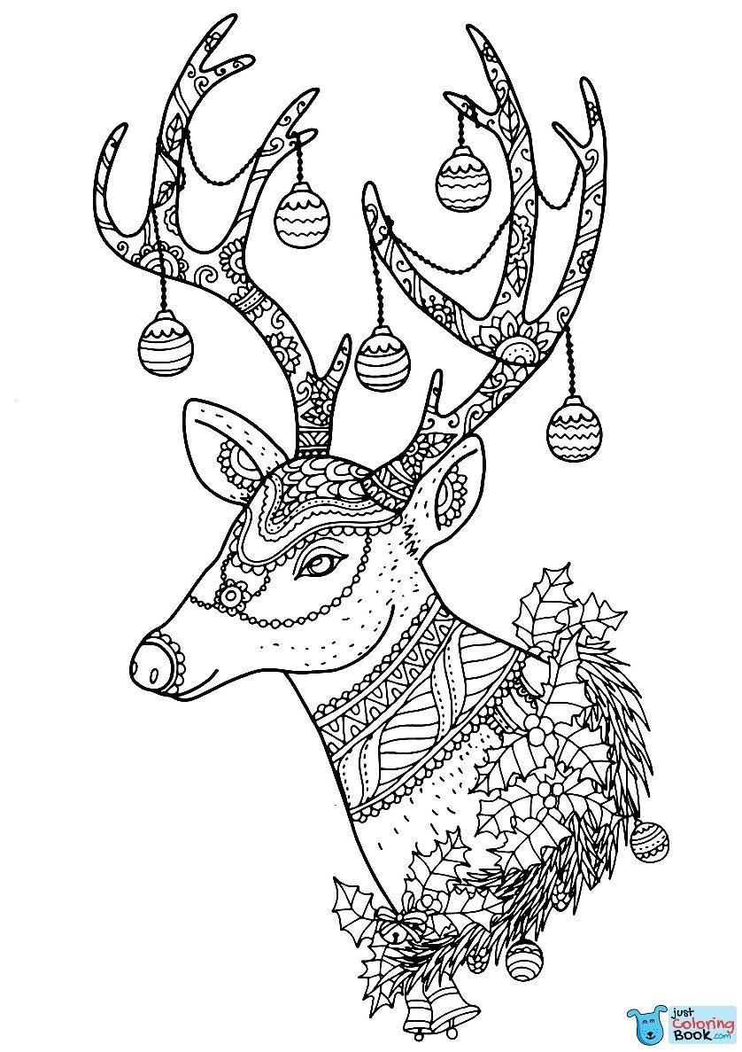 Reindeer Deer Coloring Pages Free Download