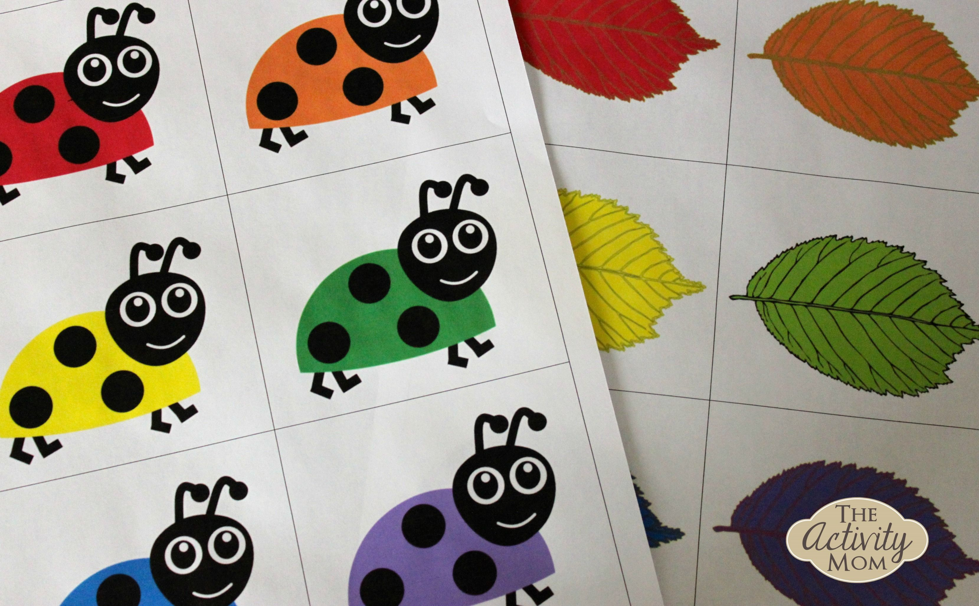 Bug Color Matching (printable Bug activities, Preschool