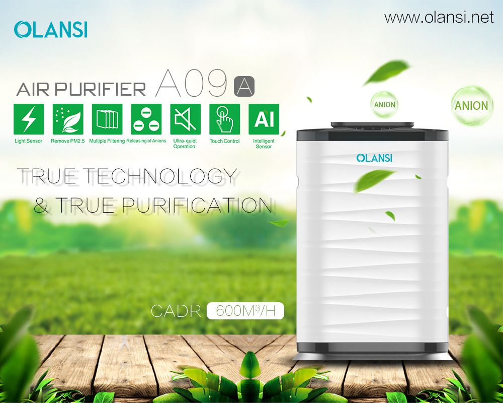 Https Www Olansi Net Best Top 5 Air Purifiers To Have In Your