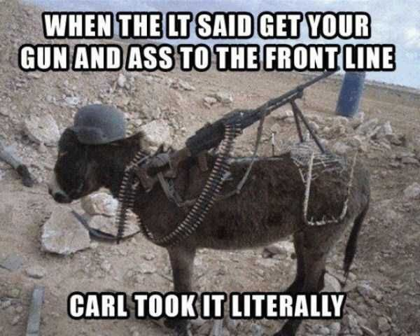 7f715d13a4848e434a6a79e4dc69da2a find this pin and more on military humour and stfu carl memes