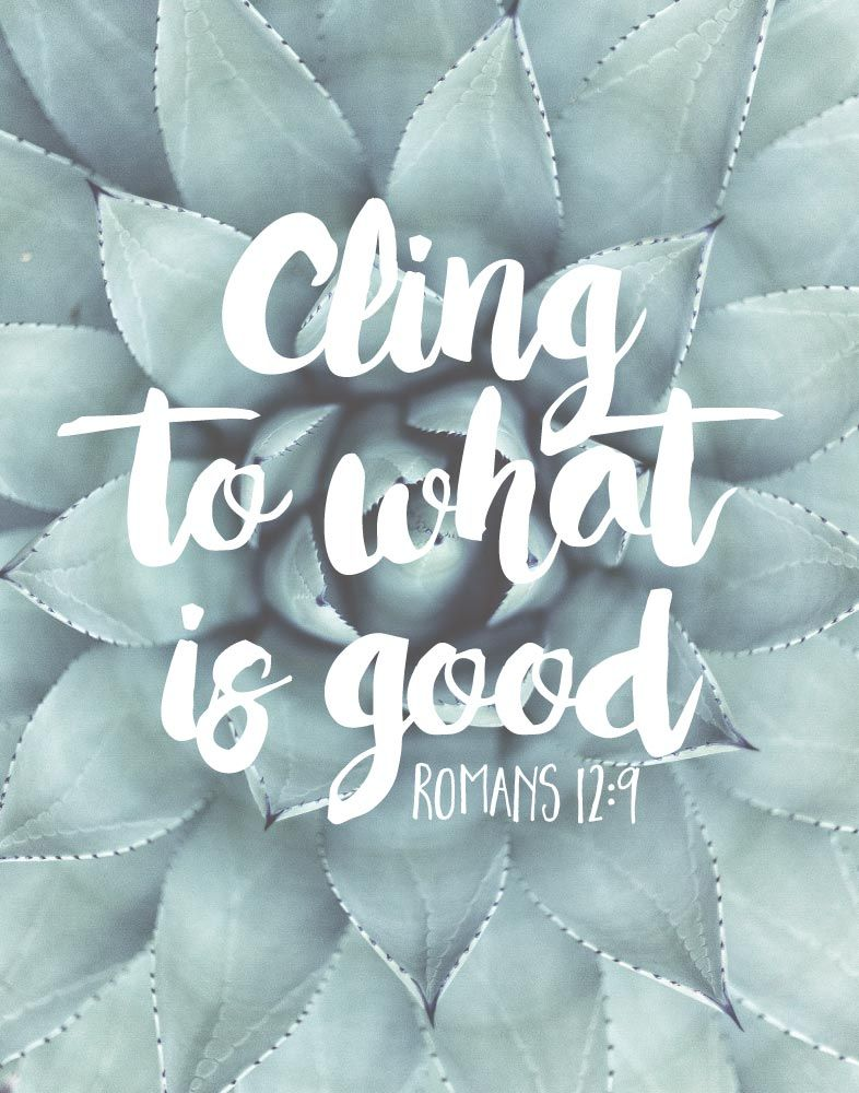 Cling to what is good Romans 12:9