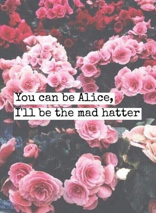 Mad Hatter Melanie Martinez Quotes Melanie Martinez Melanie Martinez Lyrics