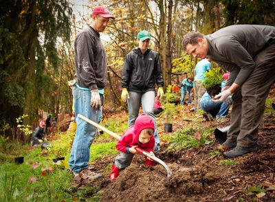10 Fun Family Volunteering Opportunities I Seattle Activities for Kids and Families - ParentMap