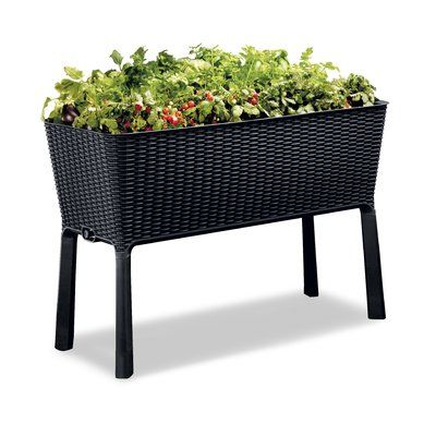 Madge Easy Grow 3 5 Ft X 1 5 Ft Resin Raised Garden Color Anthracite In 2020 Elevated Garden Beds Raised Garden Beds Garden Beds