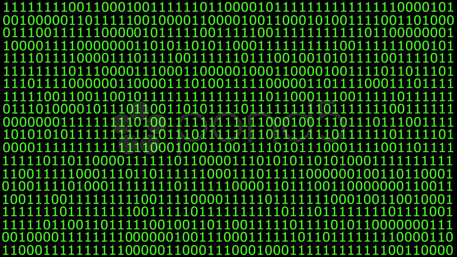 Hd Animation Of A Solid Wall Of Binary Code Stock Footage Solid Wall Hd Animation Binary Code Wall Hd Coding