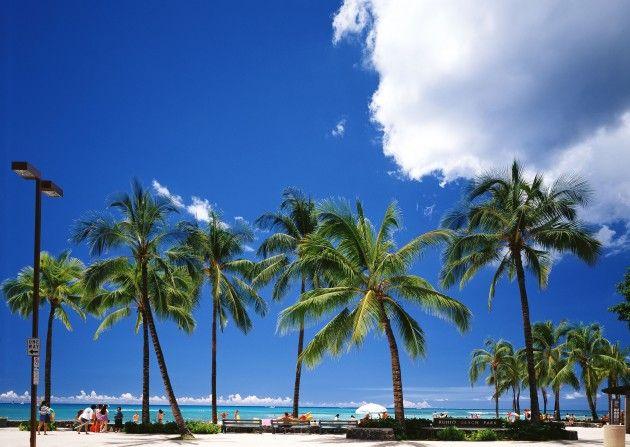 ディナーに行くならココ!ハワイのレストランおすすめランキング | tabit [タビット] | 上質な旅を愛する人のためのトラベルメディア