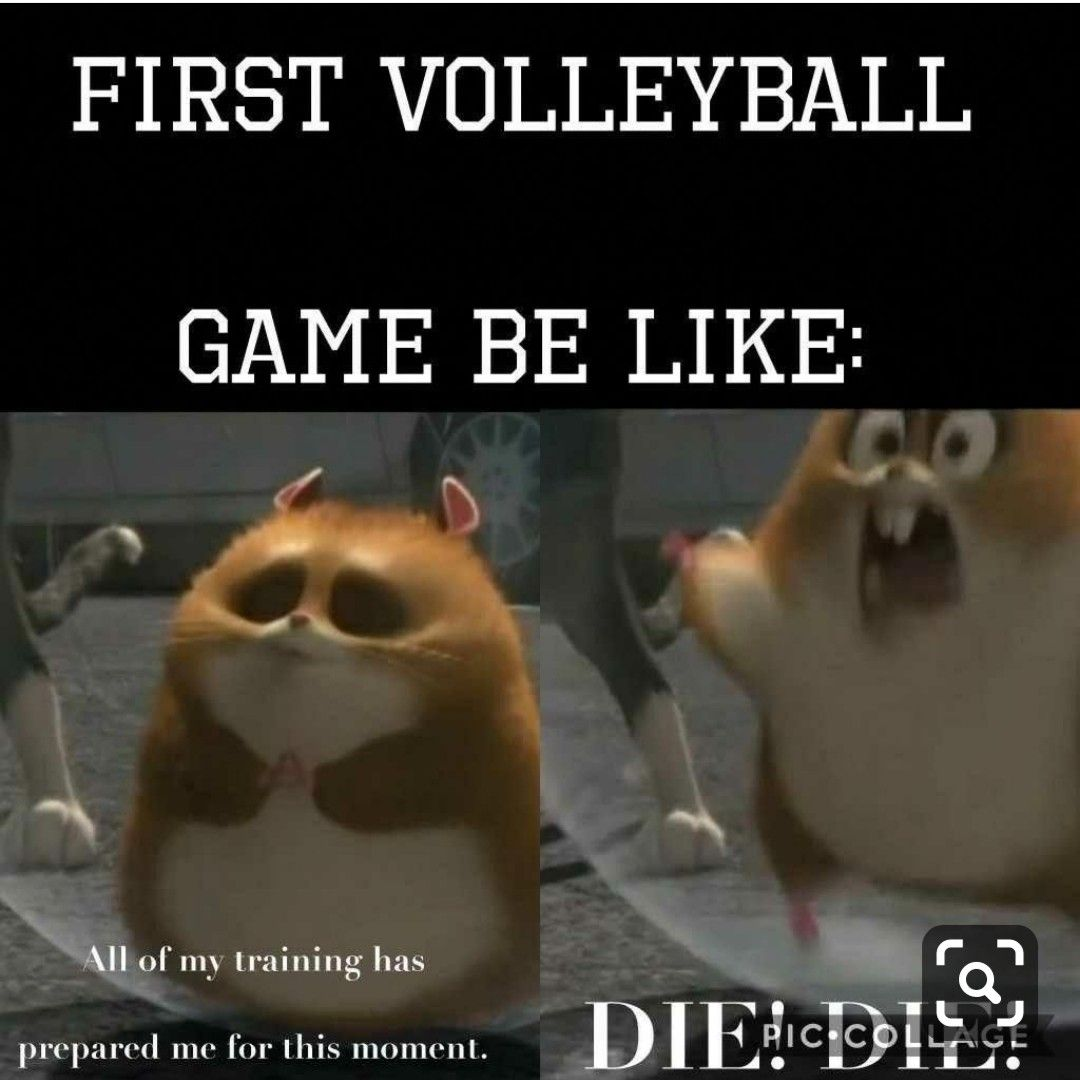 Pin By Tonhom Kaewmark On Volleyball Volleyball Humor Volleyball Jokes Volleyball Quotes
