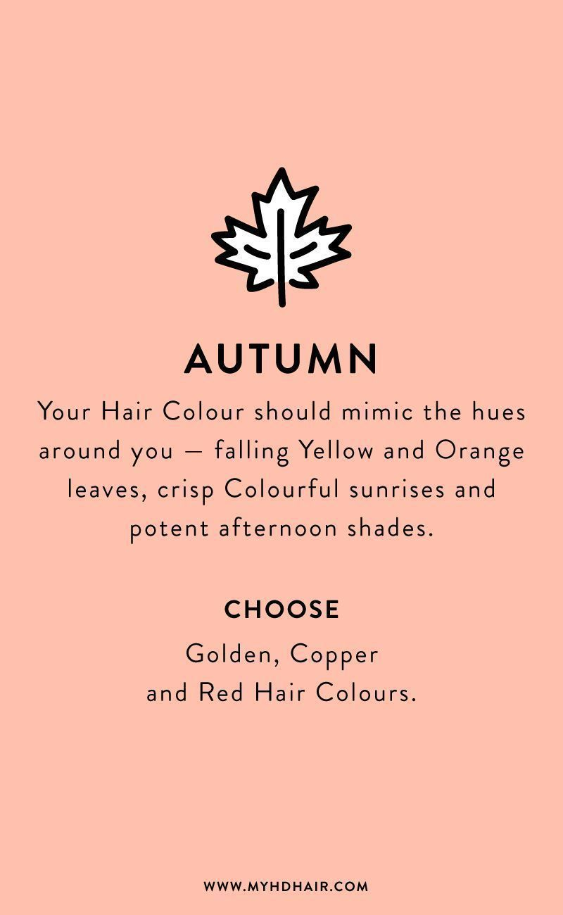 Fall Hair Quotes : quotes, We're, Obsessed, Matching, Colour, Seasons, Color,, Color, Quotes,, Colors