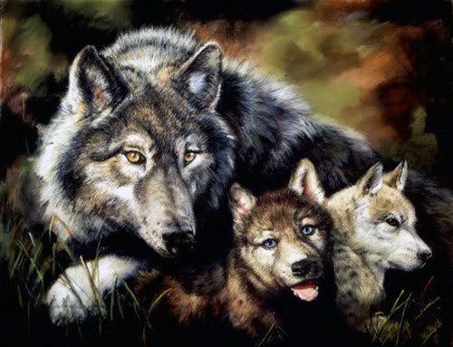 Mom And Her Kids Wolf Spirit Animal Wolf Pack Tattoo Wolf Dog