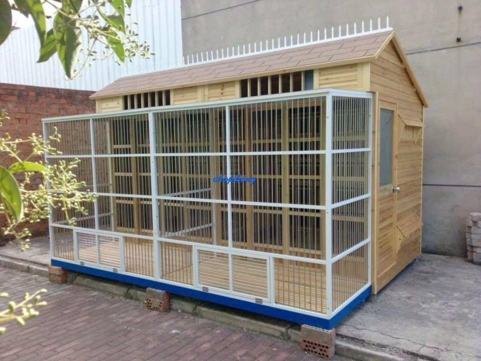 Pin By Lutz Jagiella On Pigeons Pigeon Loft Design Pigeon Loft