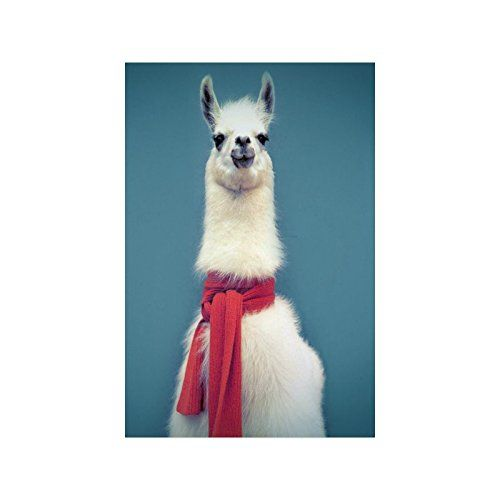 Cute Hipster Llama Collage Poster Paper Print Wall Art Living Room