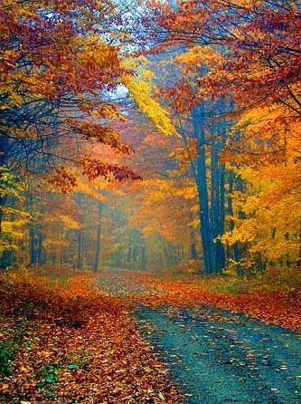 Pin de Květa K en Amazing Autumn Pinterest Otoño, Paisajes y - paisaje jardin
