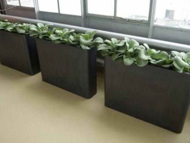 Uitzonderlijk Langwerpige Plantenbak Binnen | Midnightmenace | Bloemstukken TN12