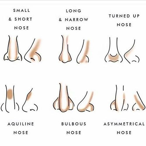 Image result for types of nose