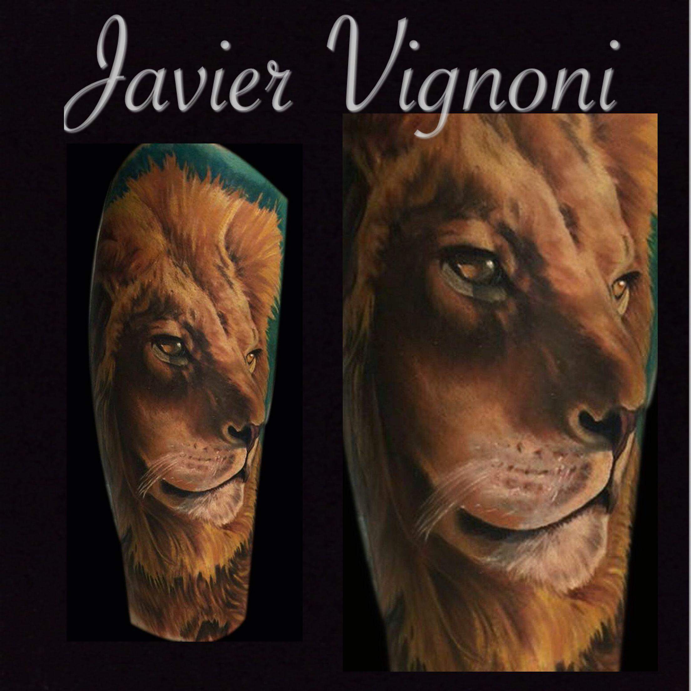 #León #Realismo #Lion #Realism #JavierVignoni #Color #BuenosAires #Argentina #Follow