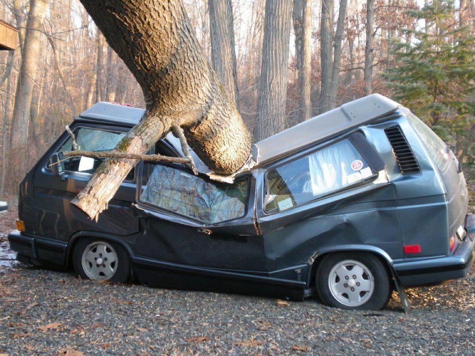 VW T3 aplastada por un árbol :(