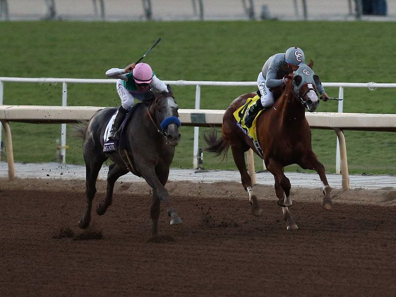 Horse track betting in california free bets no deposit on sports