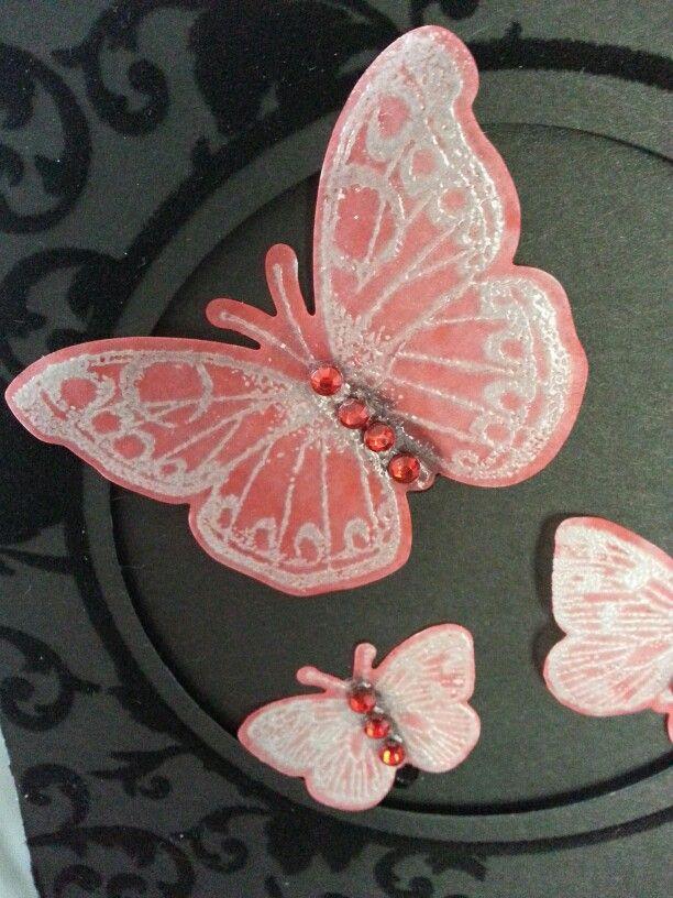 Vlinders Vlinders