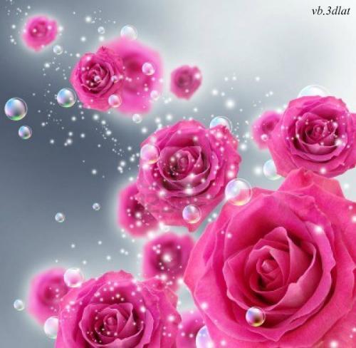 خلفيات ورود للكتابة 2020 صور ورد جديدة فيكتورسما وزهور للكتابة صور جديدة للكتابة Flower Wallpaper Floral Printables Beautiful Rose Flowers