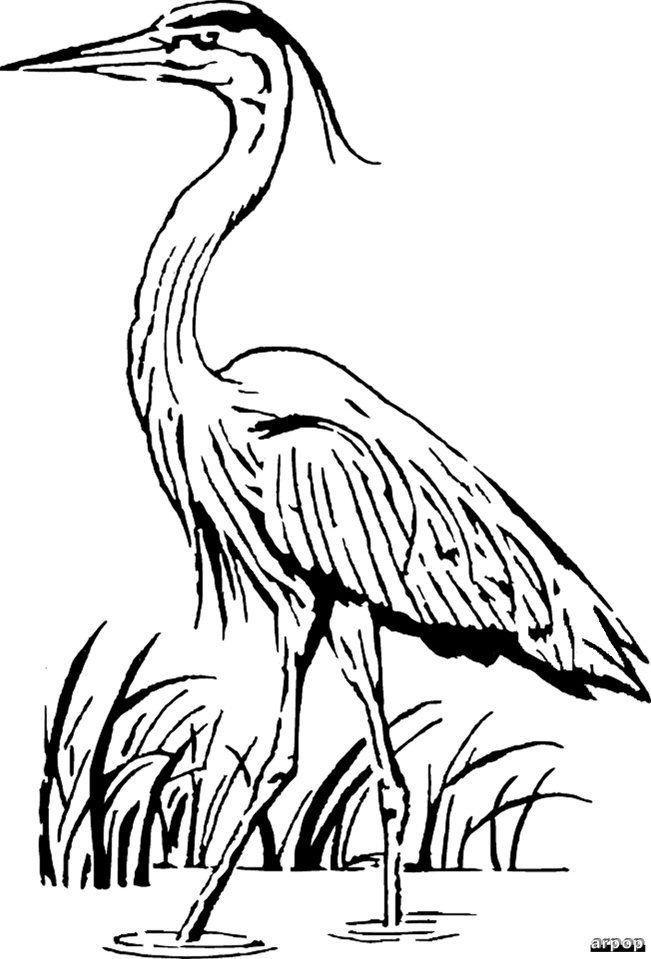 Free Scroll Saw Patterns by Arpop: Wildlife | Scroll saw ...