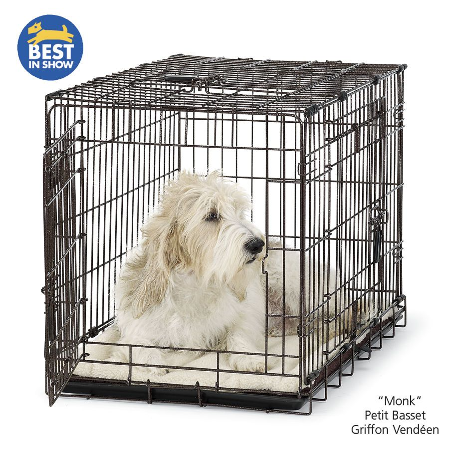 Elite Wire Dog Crate - forget the cage, get me the dog! Petit Basset ...